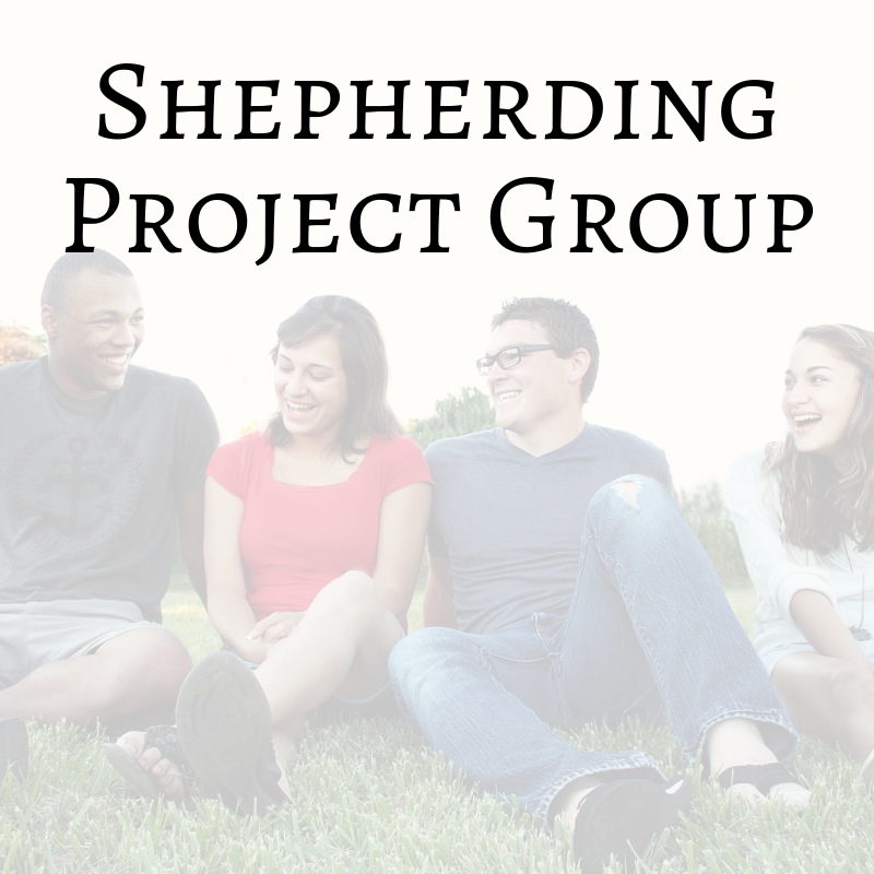 Group_Shepherding